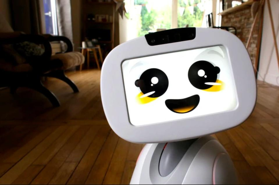 In 2015, Buddy the social robot first appeared on Indiegogo