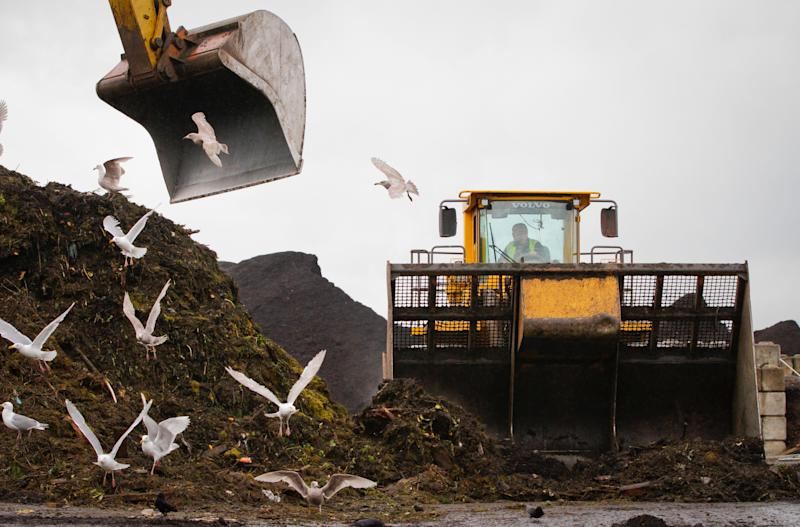 A dozer continuously crawls over the organic waste in order to speed up the decomposition process at the organic waste recycling facility in Richmond, B.C. on June 3, 2013. (Photo: Harrison Ha via Getty Images)