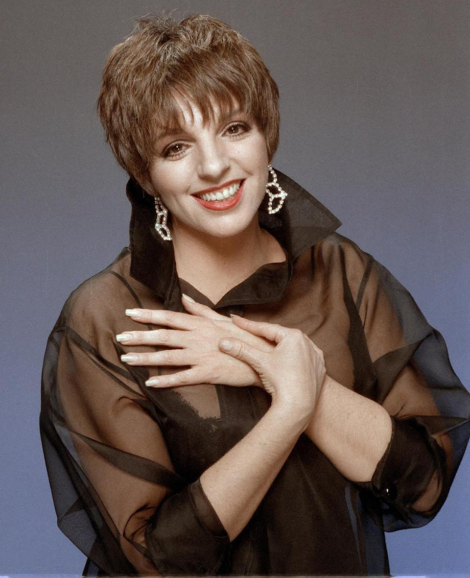 <p>From her performances on both stage and film to her illustrious recording career, Minnelli continues to be an icon. </p>