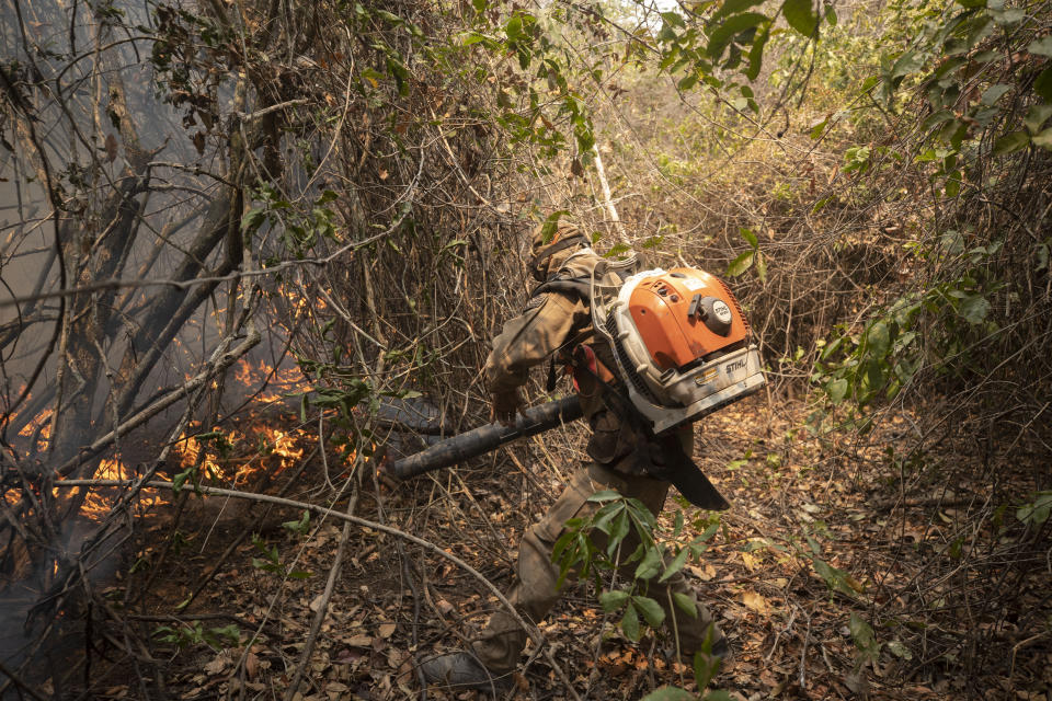 A firefighter tries to put out a fire next to the Transpantaneira road at the Pantanal wetlands near Pocone, Mato Grosso state, Brazil, Monday, Sept. 14, 2020. A vast swath of the vital wetlands is burning in Brazil, sweeping across several national parks and obscuring the sun behind dense smoke. (AP Photo/Andre Penner)