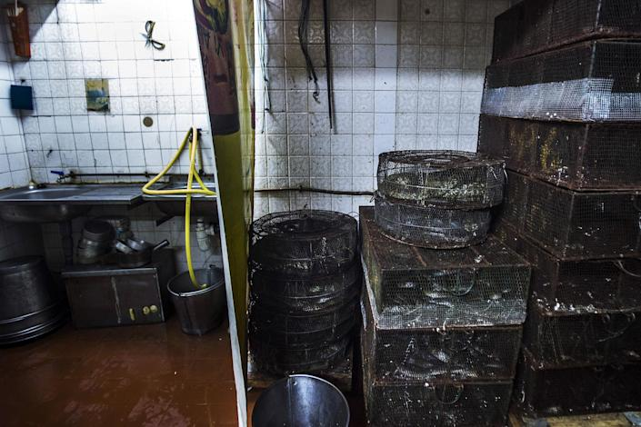 Image: Cages filled with snakes in the kitchen of the She Wong Lam snake store and restaurant in the Sheung Wan district of Hong Kong, China. (Justin Chin / Bloomberg via Getty Images file)