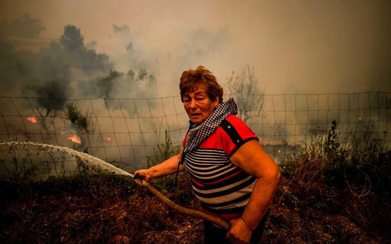 A villager uses a water hose to put out flames during a wildfire in Roda village in Macao, central Portugal on July 21, 2019. | PATRICIA DE MELO MOREIRA/Getty Images