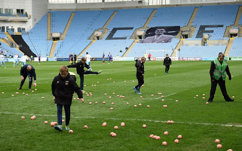 Ball boys try and clear the pitch after the plastic pig protest - Rex Features