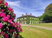 """<p>This 18th century dog-friendly B&B is surrounded by private wooded parkland - not to mention its very own polo ground and equestrian cross country courses, all used for major competitions.</p><p>In the heart of the County Down, <a href=""""https://go.redirectingat.com?id=127X1599956&url=https%3A%2F%2Fwww.booking.com%2Fhotel%2Fgb%2Ftyrella-house.en-gb.html%3Faid%3D2070935%26label%3Ddog-friendly-bed-breakfast&sref=https%3A%2F%2Fwww.countryliving.com%2Fuk%2Ftravel-ideas%2Fdog-friendly%2Fg35121802%2Fdog-friendly-bed-and-breakfast-uk%2F"""" rel=""""nofollow noopener"""" target=""""_blank"""" data-ylk=""""slk:Tyrella"""" class=""""link rapid-noclick-resp"""">Tyrella</a> offers those visiting an opportunity to explore a plethora of picturesque National Trust houses and gardens nearby, as well as brilliant dog walking opportunities on its private beach.</p><p>Open fires and dinners cooked by the owner himself set the tone for an evening of luxurious relaxation, often making new friends in the process. <br></p><p><a class=""""link rapid-noclick-resp"""" href=""""https://go.redirectingat.com?id=127X1599956&url=https%3A%2F%2Fwww.booking.com%2Fhotel%2Fgb%2Ftyrella-house.en-gb.html%3Faid%3D2070935%26label%3Ddog-friendly-bed-breakfast&sref=https%3A%2F%2Fwww.countryliving.com%2Fuk%2Ftravel-ideas%2Fdog-friendly%2Fg35121802%2Fdog-friendly-bed-and-breakfast-uk%2F"""" rel=""""nofollow noopener"""" target=""""_blank"""" data-ylk=""""slk:CHECK AVAILABILITY"""">CHECK AVAILABILITY</a></p>"""