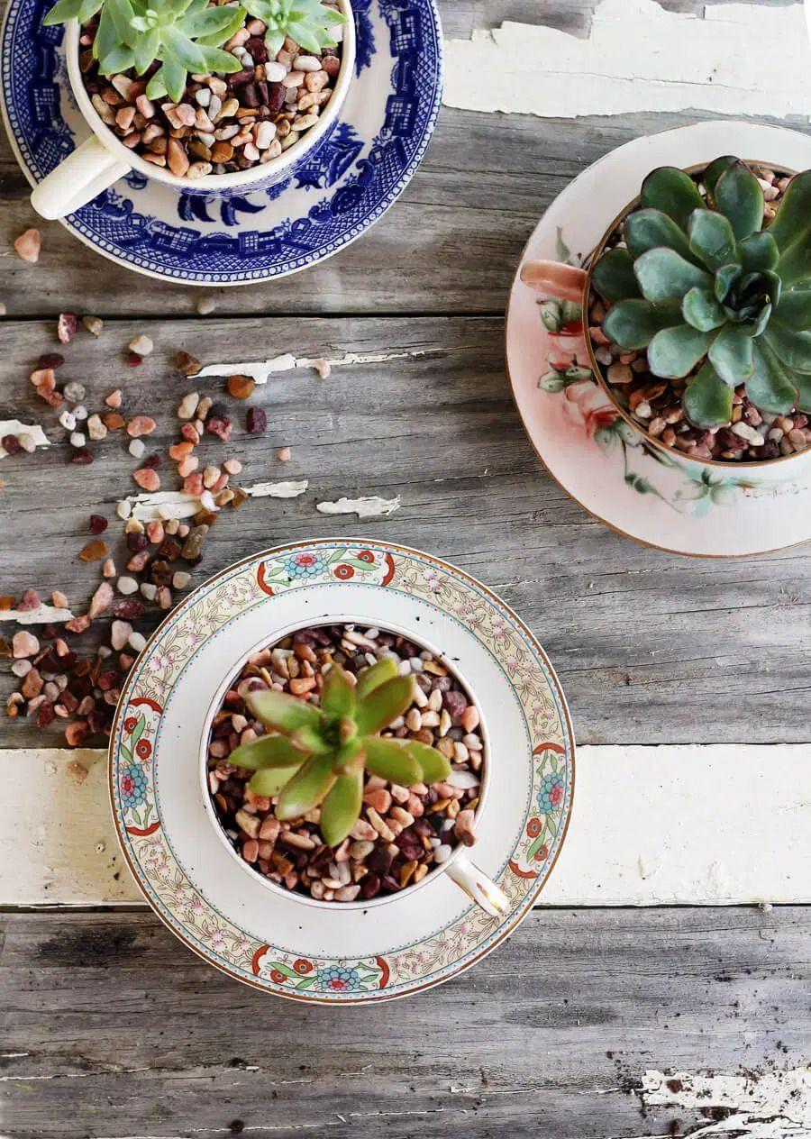 """<p>Head to a thrift store or flea market and pick up old teacups and saucers. Then, turn them into the sweetest planters around. </p><p><strong>Get the tutorial at <a href=""""https://buythiscookthat.com/tea-cup-succulent-planters/"""" rel=""""nofollow noopener"""" target=""""_blank"""" data-ylk=""""slk:Buy This Cook That"""" class=""""link rapid-noclick-resp"""">Buy This Cook That</a>.</strong></p><p><a class=""""link rapid-noclick-resp"""" href=""""https://go.redirectingat.com?id=74968X1596630&url=https%3A%2F%2Fwww.walmart.com%2Fip%2FBalsaCircle-2-lbs-White-Gravel-Pebble-Stones-Vase-Fillers-Wedding-Party-Events-Home-Centerpieces-Decorations-Supplies%2F946224526&sref=https%3A%2F%2Fwww.thepioneerwoman.com%2Fhome-lifestyle%2Fgardening%2Fg36556911%2Fdiy-planters%2F"""" rel=""""nofollow noopener"""" target=""""_blank"""" data-ylk=""""slk:SHOP PEBBLES"""">SHOP PEBBLES</a></p>"""