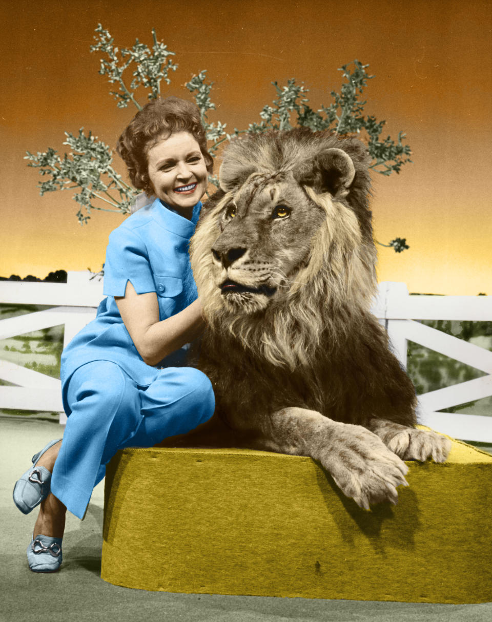 """This colorized image released by Margate And Chandler, Inc. shows actress and animal activist Betty White with a lion from her 1970s series """"The Pet Set."""" The restored 39-episode series, renamed """"Betty White's Pet Set,"""" features celebrity guests Mary Tyler Moore, Carol Burnett, Burt Reynolds, James Brolin and Della Reese. (Margate And Chandler, Inc. via AP)"""