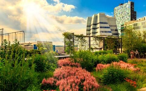 The success of the New York High Line illustrates the potential of disused railways - Credit: ARTEM VOROBIEV