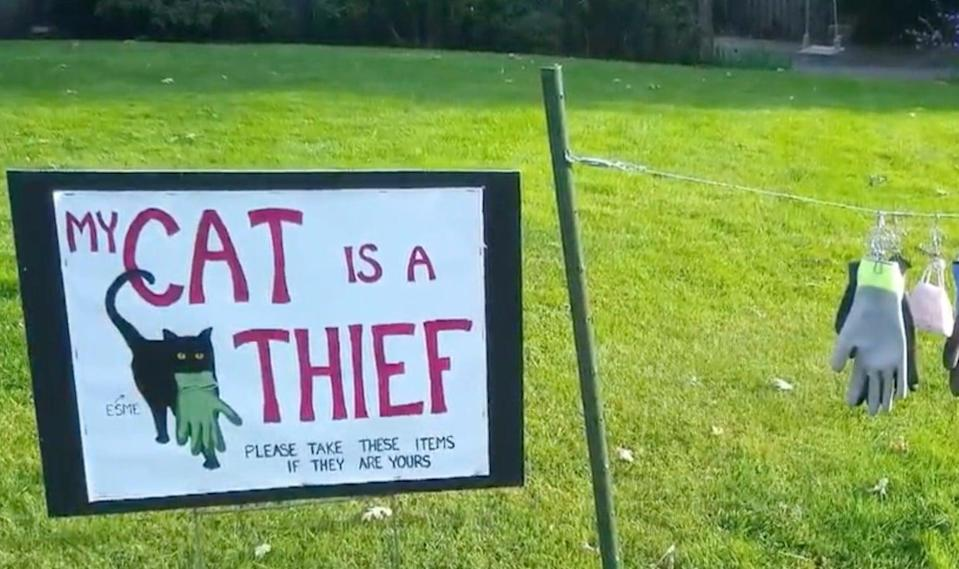Cat owner posts up sign asking neighbours to reclaim items stolen by her thieving pet (KOIN)