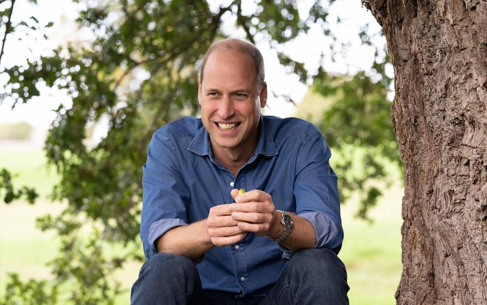 "Duke of Cambridge sitting under the canopy of an oak tree in the grounds of Windsor Castle. The future king has said there is ""no choice but to succeed"" when tackling the problem of climate change over the next 10 years - PA"