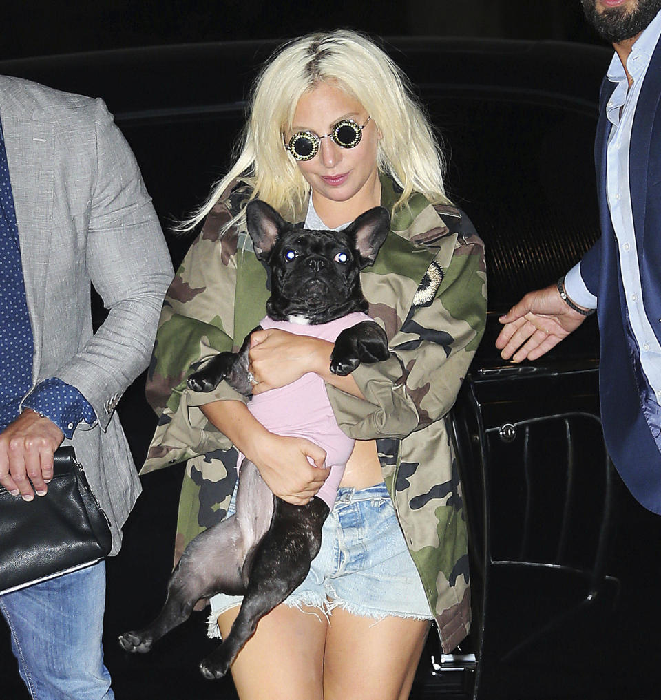 Lady Gaga is seen in New York City with her dogs