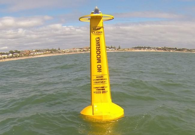 There are 34 acoustic receivers at key locations around WA. Source: Shark Smart