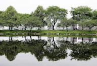 FILE - In this June 30, 2005, file photo, trees are reflected in still water on the Esplanade along the Charles River in Boston. A Massachusetts Institute of Technology project called Treepedia, that maps trees in the world's major cities, is making it easier to determine where more green is needed. Trees play a critical role in urban environments, helping keep cities cool, mitigating air and noise pollution and just making them more pleasant places to live and work. (AP Photo/Michael Dwyer, File)