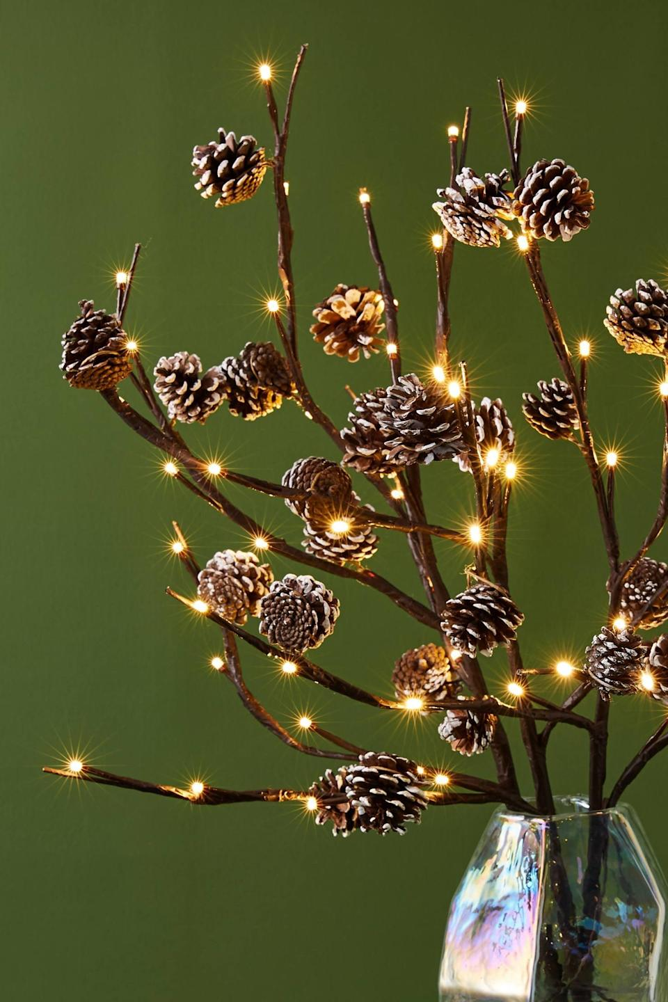 """<p>Accent your holiday tree with these <a href=""""https://www.popsugar.com/buy/Twinkling-Pinecone-Branches-490500?p_name=Twinkling%20Pinecone%20Branches&retailer=anthropologie.com&pid=490500&price=48&evar1=casa%3Aus&evar9=46615300&evar98=https%3A%2F%2Fwww.popsugar.com%2Fhome%2Fphoto-gallery%2F46615300%2Fimage%2F46615370%2FTwinkling-Pinecone-Branches&list1=shopping%2Canthropologie%2Choliday%2Cchristmas%2Cchristmas%20decorations%2Choliday%20decor%2Chome%20shopping&prop13=mobile&pdata=1"""" rel=""""nofollow noopener"""" class=""""link rapid-noclick-resp"""" target=""""_blank"""" data-ylk=""""slk:Twinkling Pinecone Branches"""">Twinkling Pinecone Branches</a> ($48).</p>"""