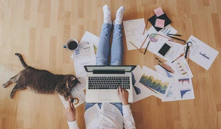 Person sitting on floor at home with laptop, paperwork and cat.
