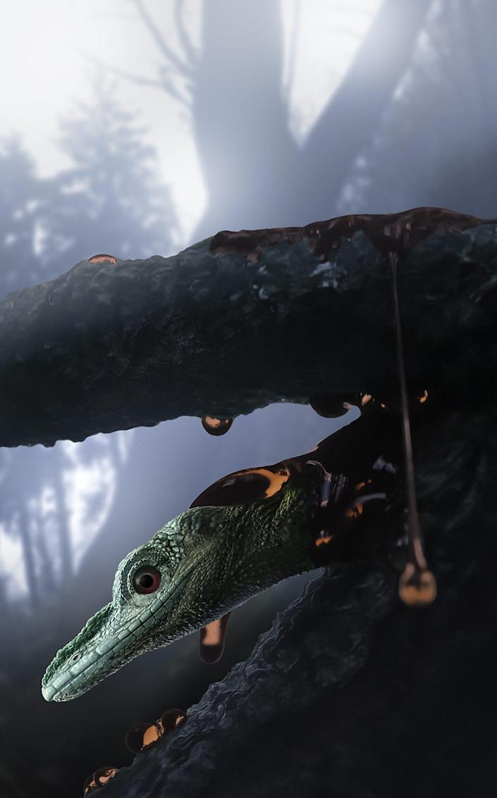 Once thought to be a bird, the Oculudentavis naga turned out to be a small, unique lizard.