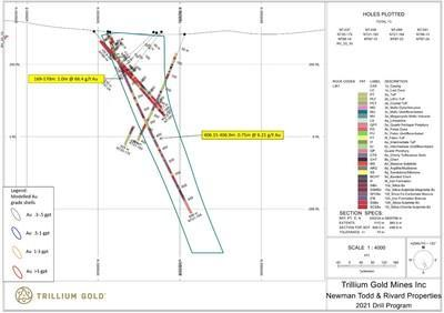 Figure 6:  Section for hole NT21-184 showing significant mineralized intersections. (CNW Group/Trillium Gold Mines Inc.)