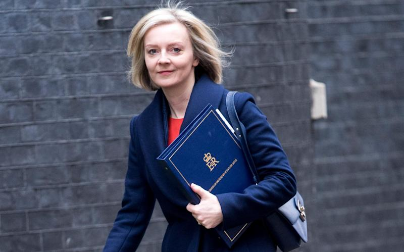 Liz Truss has clashed repeatedly with judges while Britain's prison crisis is also worsening - Paul Grover
