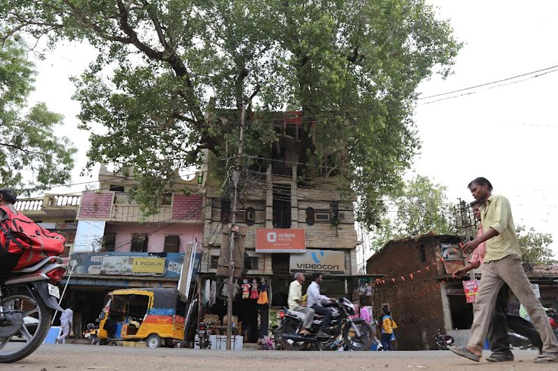 The fig tree, known as peepal in Hindi, is one of the most worshipped trees in India and cutting it down is considered inauspicious by many (AFP Photo/Uma Shankar MISHRA)