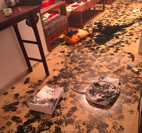 Family Who Left Dog Alone For Three Hours Come Home To An