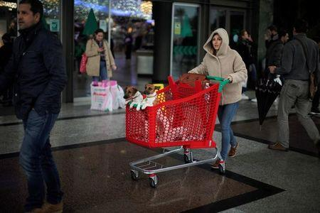 A woman pushes a shopping cart with her dogs at the entrance of La Canada shopping centre during the Black Friday sales in Marbella, southern Spain, November 25, 2016. REUTERS/Jon Nazca