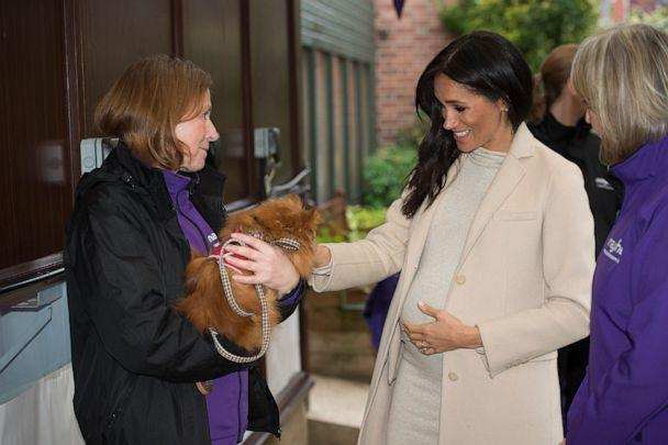 PHOTO: Meghan, the Duchess of Sussex meets 'Foxy' during her visit to the Mayhew, an animal welfare charity, Jan. 16, 2019, in London. (Eddie Mulholland/Getty Images)