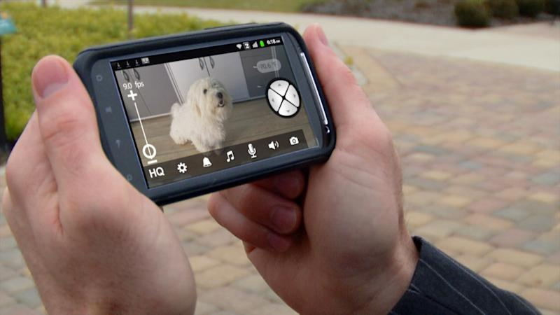 This undated photo provided by Motorola shows a view displayed by Motorola's Scout1 Wi-Fi Pet Monitor, a gadget that lets pet lovers keep an eye on their pets while they're away. In addition to viewing their furry friends remotely, users can pan, tilt and zoom their cameras through their smartphone, tablet or desktop computer. The device is just one of the slightly bizarre gifts available this year for the techie who has everything. (AP Photo/Motorola)