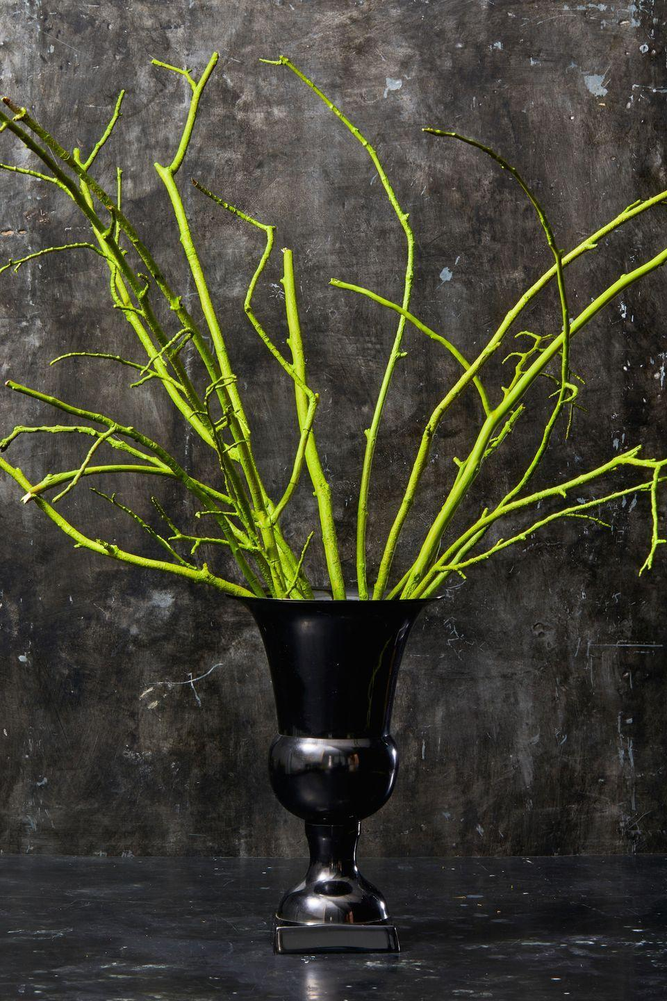 <p>Just spray paint tree branches with as many layers as you need so they're completely covered. Then, let them dry and place in a vase. The best part? This centerpiece is practically free since the materials come from your own backyard. </p>