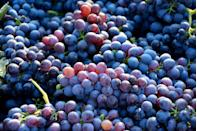 """<p><a href=""""https://www.goodhousekeeping.com/health/diet-nutrition/a47266/health-benefits-of-grapes/"""" rel=""""nofollow noopener"""" target=""""_blank"""" data-ylk=""""slk:Grapes"""" class=""""link rapid-noclick-resp"""">Grapes</a> contain polyphenolic compounds with antioxidant properties, which may help reduce cellular damage. Adding grapes (about 1–2 cups per day) to your diet can help to protect your body's tissues and decrease markers of <a href=""""https://www.goodhousekeeping.com/health/wellness/g35255259/chronic-inflammation-tips/"""" rel=""""nofollow noopener"""" target=""""_blank"""" data-ylk=""""slk:inflammation"""" class=""""link rapid-noclick-resp"""">inflammation</a>. Frozen grapes are a wonderful, hydrating summer treat, but also consider roasting grapes along with veggies on a sheet pan!</p>"""