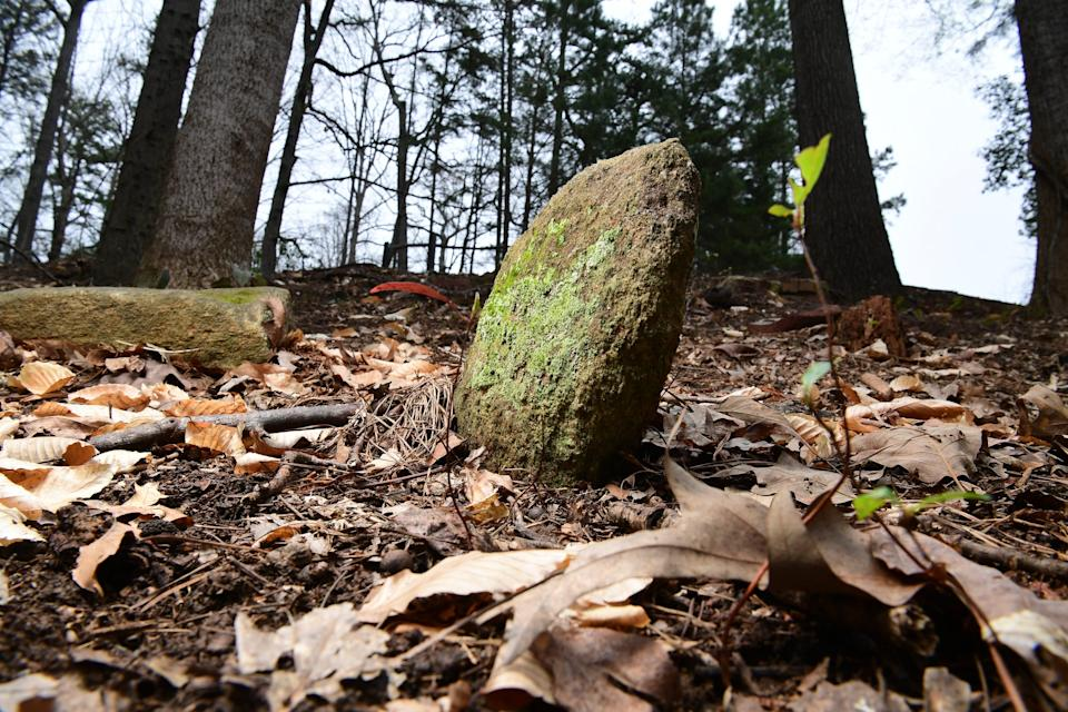 Unmarked stones on a hill on the edge of Woodland Cemetery, also knows as Cemetery Hill near Memorial Stadium at Clemson University Wednesday, March 18, 2020. Clemson history shows former school President Walter Riggs came up with the idea in 1922, a way to recognize faculty and administration for their service, news services reported.