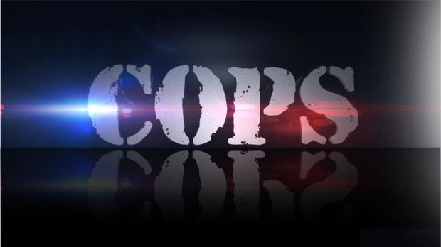 Logo of US reality show Cops pulled from air June 2020 after 33 years
