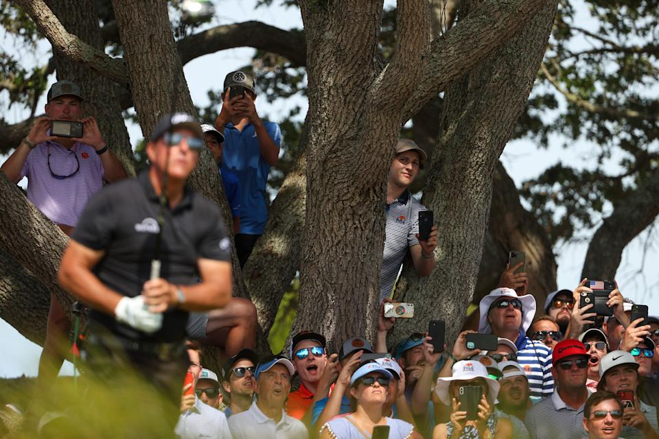 KIAWAH ISLAND, SOUTH CAROLINA - MAY 22: Fans look on from a tree as Phil Mickelson of the United States plays his shot from the seventh tee during the third round of the 2021 PGA Championship at Kiawah Island Resort's Ocean Course on May 22, 2021 in Kiawah Island, South Carolina. (Photo by Patrick Smith/Getty Images)