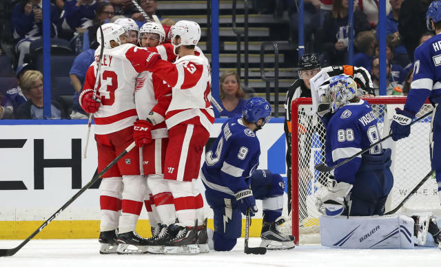 Members of the Detroit Red Wings, from left, Trevor Daley, Justin Abdelkader, Luke Glendening and Darren Helm celebrate a goal as Tampa Bay Lightning's Tyler Johnson (9) and Andrei Vasilevskiy, of Russia, react during the second period of an NHL hockey game Thursday, Oct. 18, 2018, in Tampa, Fla. (AP Photo/Mike Carlson)