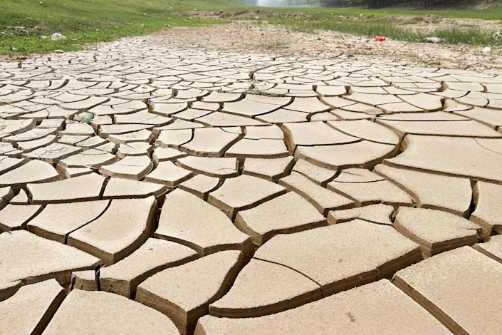 The cracked bottom of a canal in Xunxian, in central China's Henan province, hit by severe drought, on July 28, 2014 (AFP Photo/)