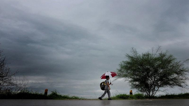 Monsoon 2019: Delhi, Haryana and Chandigarh to Get Respite From Heat Soon As Showers Likely in Next 72 Hours