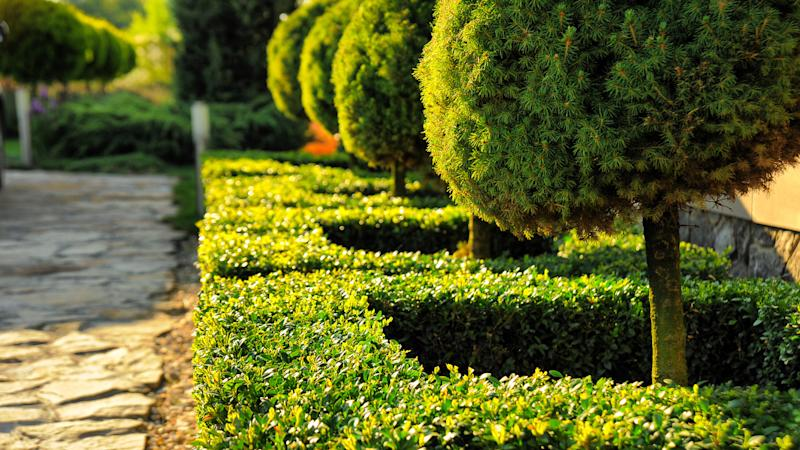 Employ Smart Landscaping