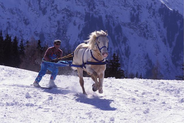 Skijoring first appeared as a demonstration sport at the 1928 Winter Games. The racing event featured a skier towed to a horse, dogs or reindeer.