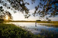 """<p><strong>Give us the wide-angle view: what kind of beach are we talking about?</strong><br> Thanks to its 10 miles of pristine coastline, <a href=""""https://www.cntraveler.com/activities/charleston/kiawah-island-golf-resort?mbid=synd_yahoo_rss"""" rel=""""nofollow noopener"""" target=""""_blank"""" data-ylk=""""slk:Kiawah Island"""" class=""""link rapid-noclick-resp"""">Kiawah Island</a> is generally regarded as one of the country's most beautiful barrier islands—and you can bet the asking prices reflect the admiration. The majority of the pristine sands are under private ownership, but the public can sample the scenery at Beachwalker Park, down at the southwestern tip of the island. The sands are soft as anywhere else on this nature-lover's island, and best of all, you don't need a homeowner's deed to enjoy them.</p> <p><strong>How accessible is it?</strong><br> It's around a 45-minute drive from Charleston's downtown, through Johns Island. There's a parking lot for public use, and entry costs between $5 and $15 ($20 for RVs/campers), depending on the season. Beach chairs, umbrellas, and beach wheelchairs are available for rental as well, and there are restrooms on site.</p> <p><strong>Decent services and facilities, would you say?</strong><br> There aren't many beachside amenities, but those that are offered feel higher-end than your standard fare. There are gleaming dressing and picnic areas, as well as a small vending facility for drinks and snacks. In high season, you can rent chairs and umbrellas, and even beach-accessible wheelchairs.</p> <p><strong>How's the actual beach stuff—sand and surf?</strong><br> Beachwalker Park definitely lives up to its name—you're venturing here to stroll along the sand, not to partake in high-octane water sports. The water is clean (though not clear) and canoeing and kayaking are both popular, especially around the Kiawah River, which runs parallel to the shore.</p> <p><strong>Can we go barefoot?</strong><br> The soft sands are friendly to barefoot walker"""