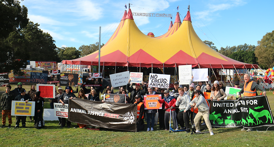 Animal welfare protesters outside Stardust Circus. Source: Animal Justice Party