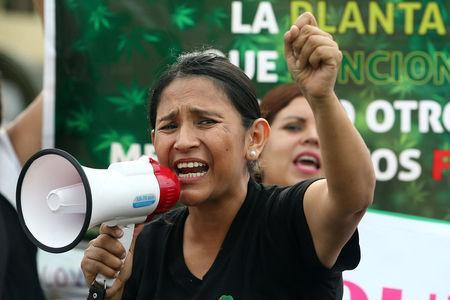 Ana Alvarez participates in a protest in favor of the legalization of medical marijuana outside the Interior Ministry in Lima, Peru March 1, 2017. REUTERS/Guadalupe Pardo