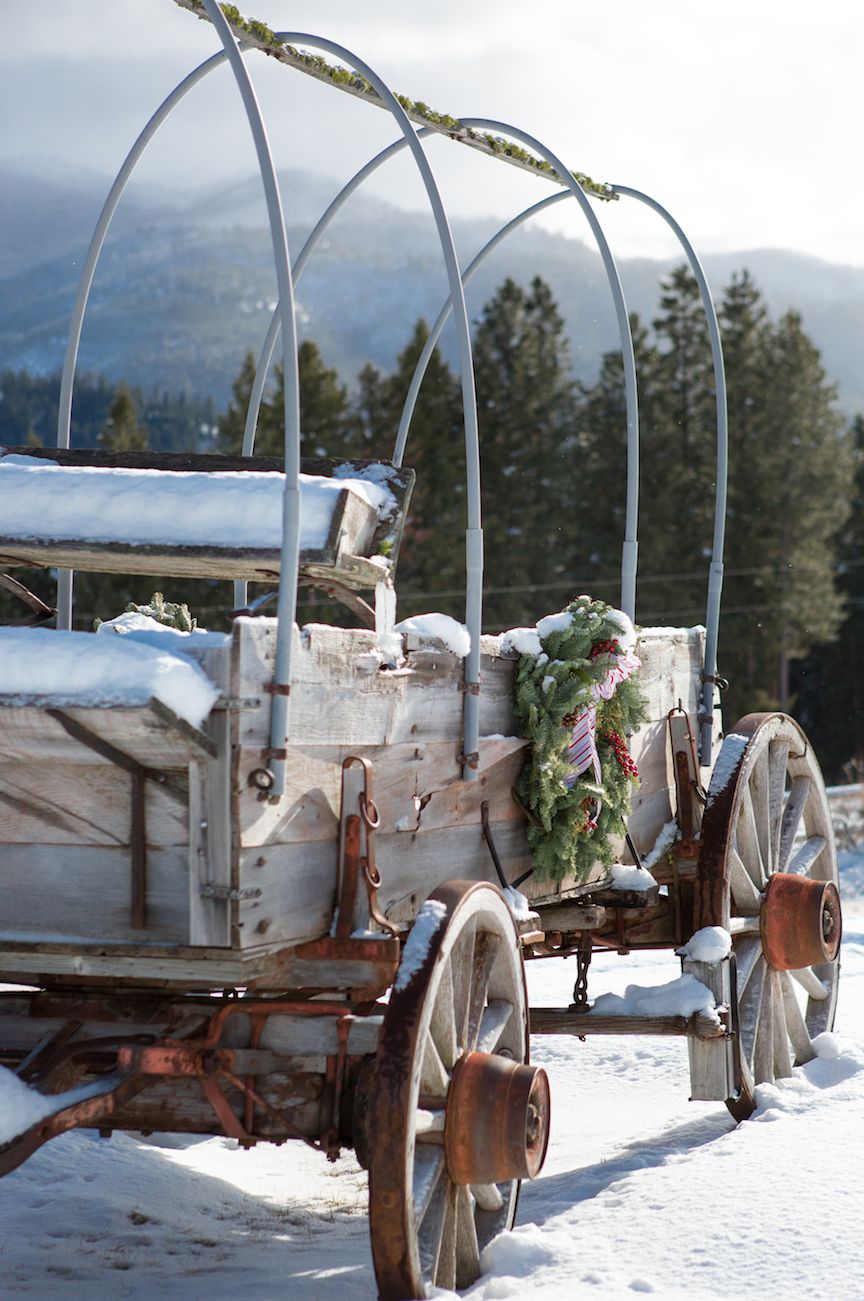 """<p>Tucked within Montana's Bitterroot Mountains, this gorgeous town is the perfect place to enjoy a true cowboy Christmas. Over at <a href=""""https://go.redirectingat.com?id=74968X1596630&url=https%3A%2F%2Fwww.tripadvisor.com%2FHotel_Review-g45139-d78976-Reviews-Triple_Creek_Ranch-Darby_Montana.html&sref=https%3A%2F%2Fwww.countryliving.com%2Flife%2Ftravel%2Fg2829%2Fbest-christmas-towns-in-usa%2F"""" rel=""""nofollow noopener"""" target=""""_blank"""" data-ylk=""""slk:Triple Creek Ranch"""" class=""""link rapid-noclick-resp"""">Triple Creek Ranch</a>, you can enjoy horseback riding, snowshoeing, ice fishing, and more, and you'll find elaborate holiday décor all around the property and cabins. Guests are even given the option of choosing a real or <a href=""""https://www.countryliving.com/home-design/decorating-ideas/g5027/best-artificial-christmas-trees/"""" rel=""""nofollow noopener"""" target=""""_blank"""" data-ylk=""""slk:artificial tree"""" class=""""link rapid-noclick-resp"""">artificial tree</a> for their cabins, with ornaments provided. </p><p><a class=""""link rapid-noclick-resp"""" href=""""https://go.redirectingat.com?id=74968X1596630&url=https%3A%2F%2Fwww.tripadvisor.com%2FTourism-g45139-Darby_Montana-Vacations.html&sref=https%3A%2F%2Fwww.countryliving.com%2Flife%2Ftravel%2Fg2829%2Fbest-christmas-towns-in-usa%2F"""" rel=""""nofollow noopener"""" target=""""_blank"""" data-ylk=""""slk:PLAN YOUR TRIP"""">PLAN YOUR TRIP</a></p>"""