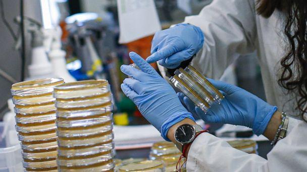 PHOTO: NUTLEY, NJ - FEBRUARY 28: A researcher sorts samples in a lab that is developing testing for the COVID-19 coronavirus at Hackensack Meridian Health Center for Discovery and Innovation on February 28, 2020 in Nutley, New Jersey. (Kena Betancur/Getty Images)