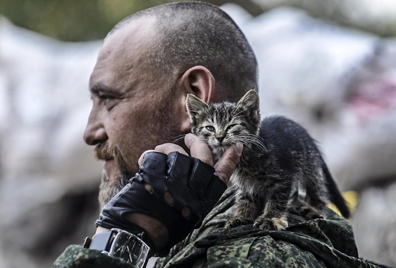 A pro-Russian separatist pets a kitten perched on his shoulder as he stands at a checkpoint in the northern outskirts of city of Donetsk, on July 22, 2014 (AFP Photo/Bulent Kilic)