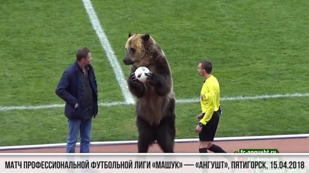 A trained bear did tricks to open a Russian third league soccer match. (Youtube)