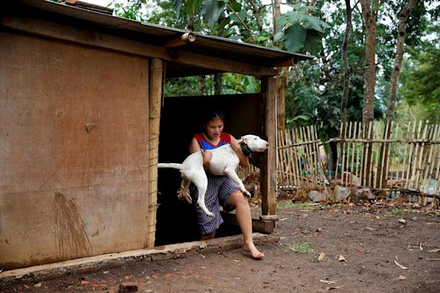 <p>Dog breeder Agus Badud's daughter carries a dog to wash him at their house in Cibiuk village of Majalaya, West Java province, Indonesia, Sept. 27, 2017. (Photo: Beawiharta/Reuters) </p>