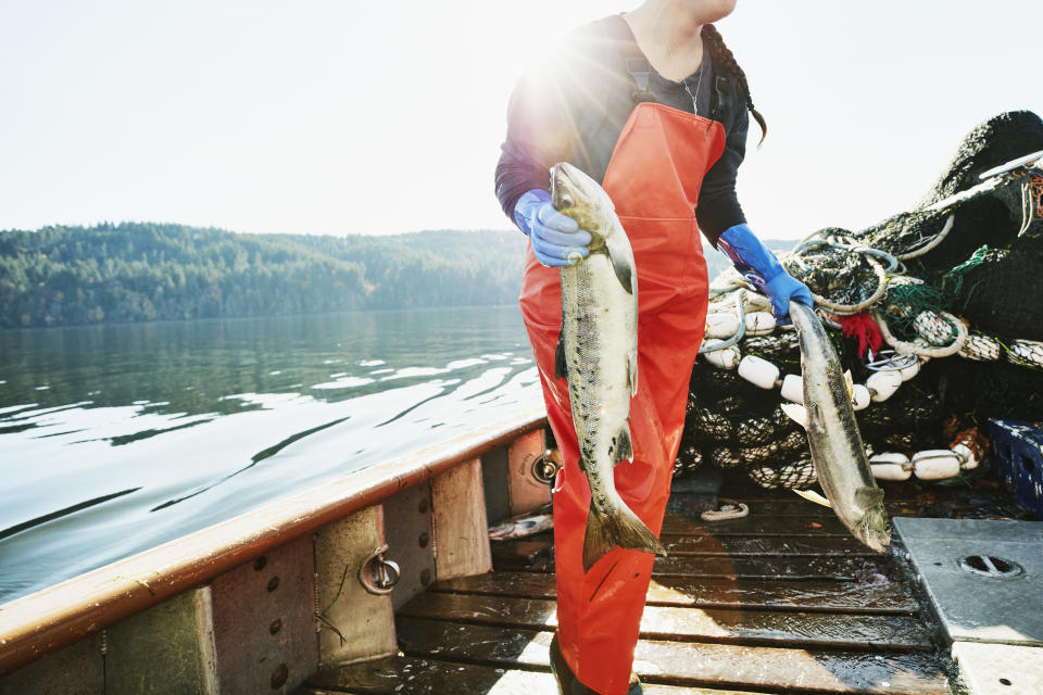 Female crew member of fishing boat carrying salmon to hold of boat