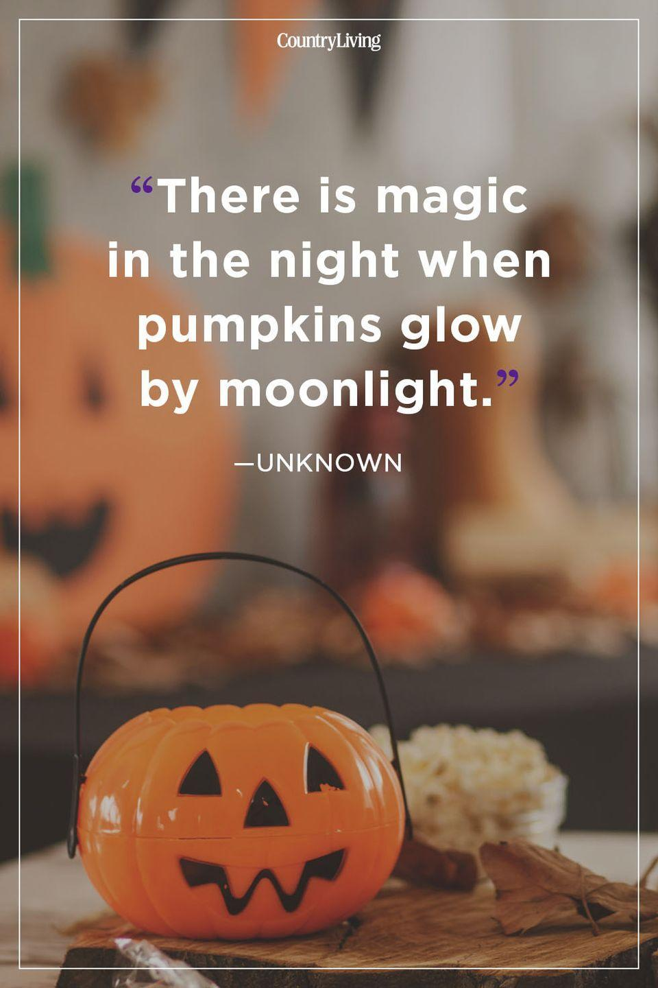 """<p>""""There is magic in the night when pumpkins glow by moonlight.""""</p>"""