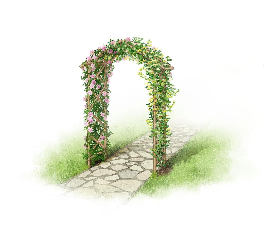 "<p>For an old-fashioned and romantic look, pair a simple arch design with climbers that bear colourful blooms in abundance. Scented climbers like honeysuckle, jasmine and roses are perfect for arches, as the blooms project their perfume just at the right height.</p><p><strong>SHOP NOW...</strong></p><p>• <a href=""https://www.amazon.co.uk/Selections-Elegance-Wooden-Garden-Ground/dp/B01C4EDXCQ/"" target=""_blank"">Selections Wooden Garden Arch via Amazon</a></p><p>• <a href=""https://www.manomano.co.uk/p/trellis-arch-150-x-50-x-220-cm-wood-1602417"" target=""_blank"">Trellis arch via ManoMano</a></p><p>• <a href=""https://www.diy.com/departments/blooma-softwood-round-top-arch/260013_BQ.prd"" target=""_blank"">Blooma Softwood Round Top Arch via B&Q</a></p>"