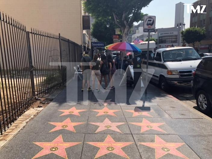 "(Photo: Courtesy of <a href=""http://www.tmz.com/2018/08/09/fake-donald-trump-stars-all-over-hollywood-blvd-walk-of-fame/"" rel=""nofollow noopener"" target=""_blank"" data-ylk=""slk:TMZ"" class=""link rapid-noclick-resp"">TMZ</a>)"