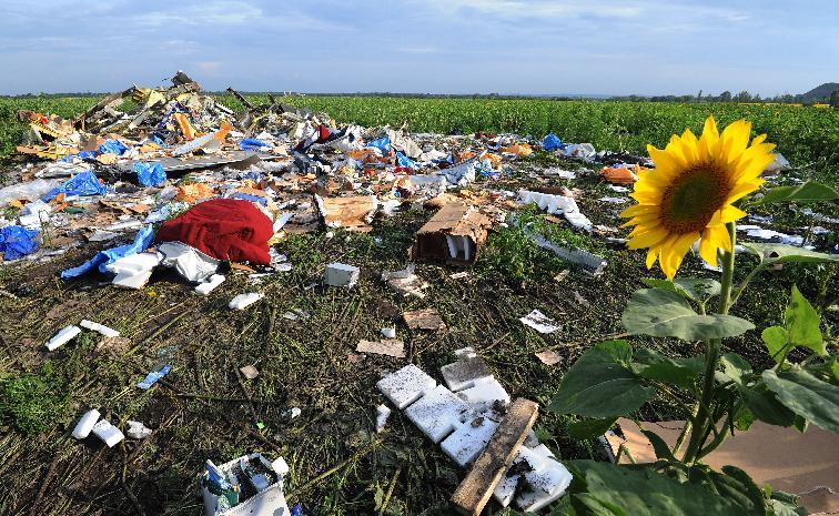 The wreckage of Malaysia Airlines flight MH17 pictured on on July 19, 2014, two days after it crashed in a sunflower field near the village of Rassipnoe in east Ukraine (AFP Photo/Dominique Faget)
