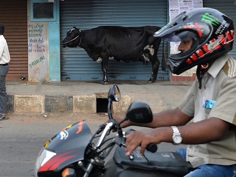 A cow stands next to a shuttered store as a biker rides past on a street in Bangalore: MANJUNATH KIRAN/AFP/Getty Images